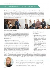 MSc in International Management Program Flyer